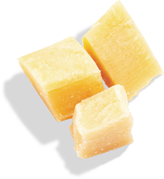 guttiau_snack_parmesan-cheese-isolated